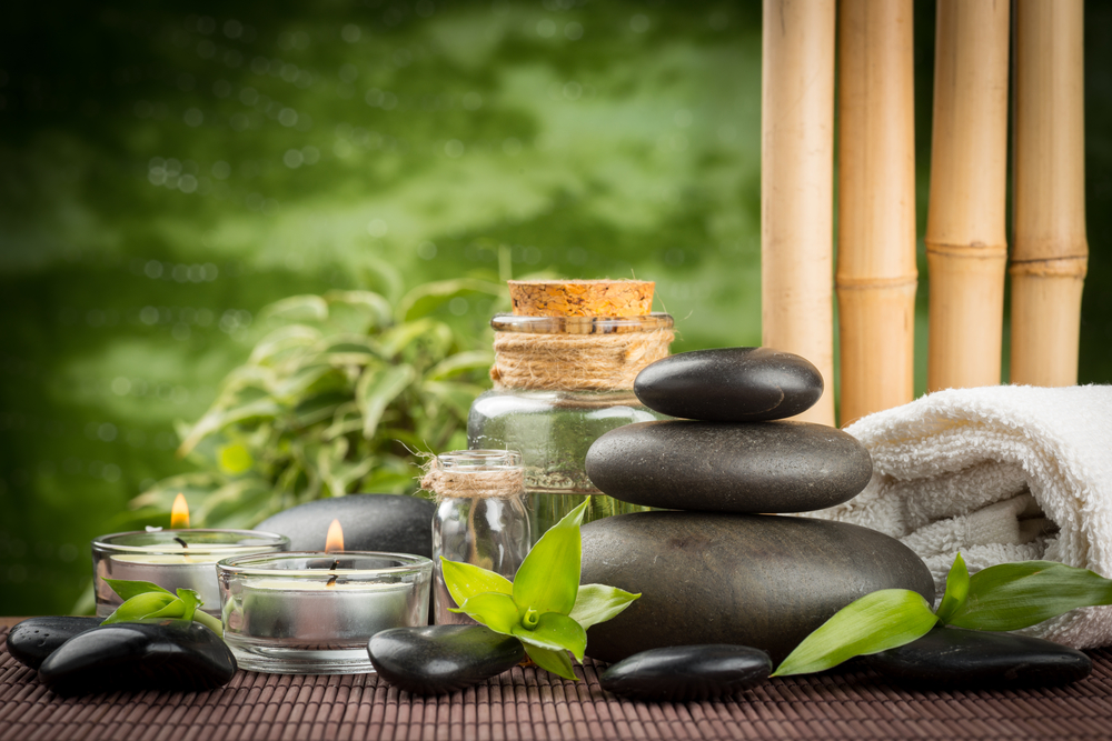 India Study Site Provides High-Volume Ayurveda Training - Natural